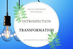 de-lintrospection-a-la-transformation