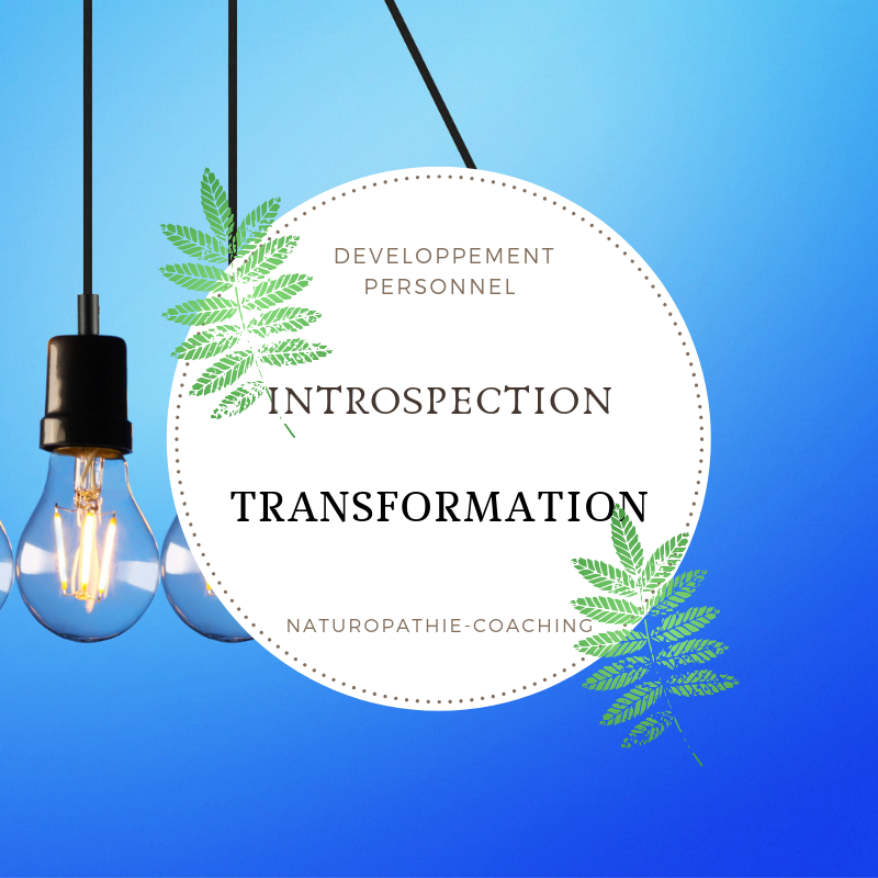 de-lintrospection-a-la-transformation